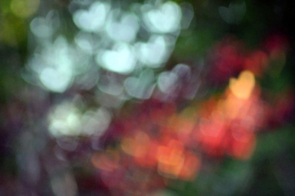 IMG_0101 rainbow hearts