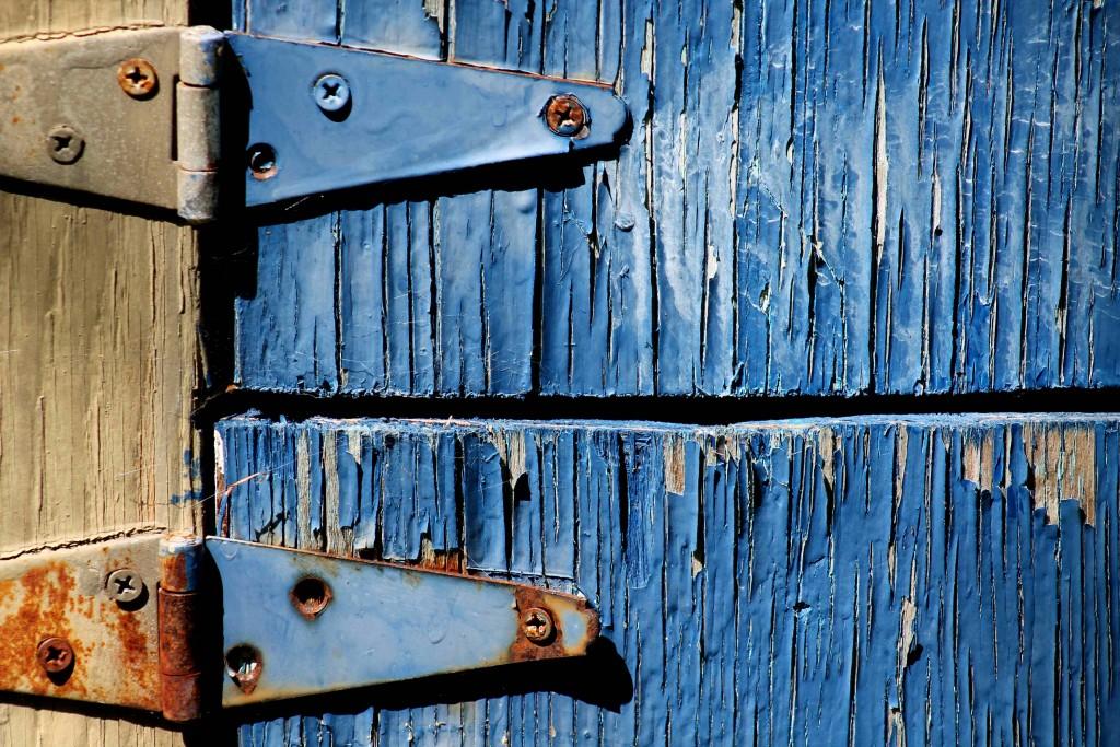 blue IMG_8073