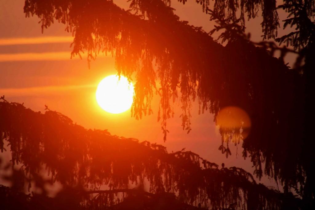 sunrise IMG_0260