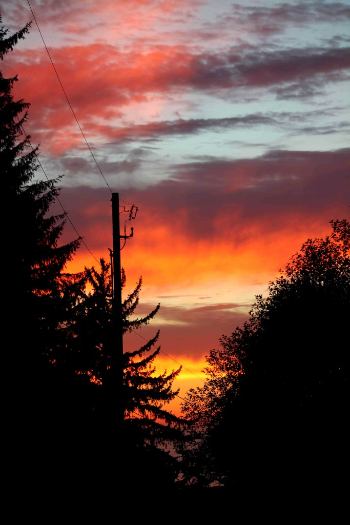 sunset IMG_1583