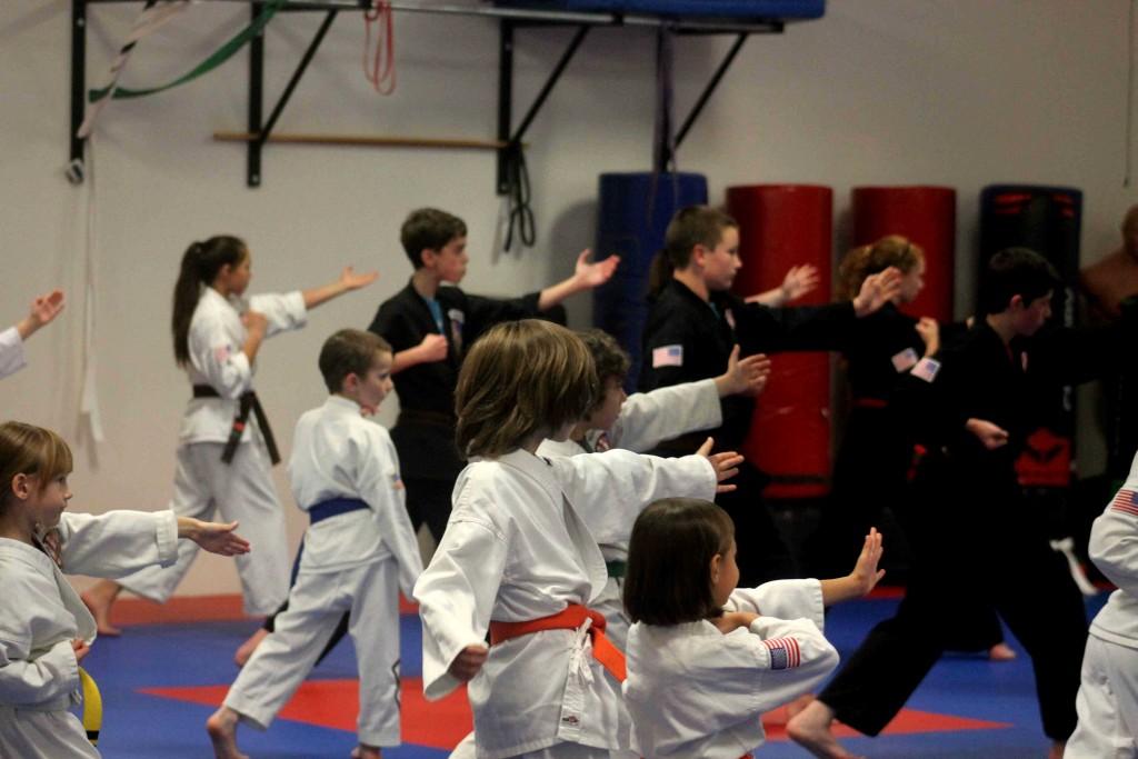 karate IMG_2087