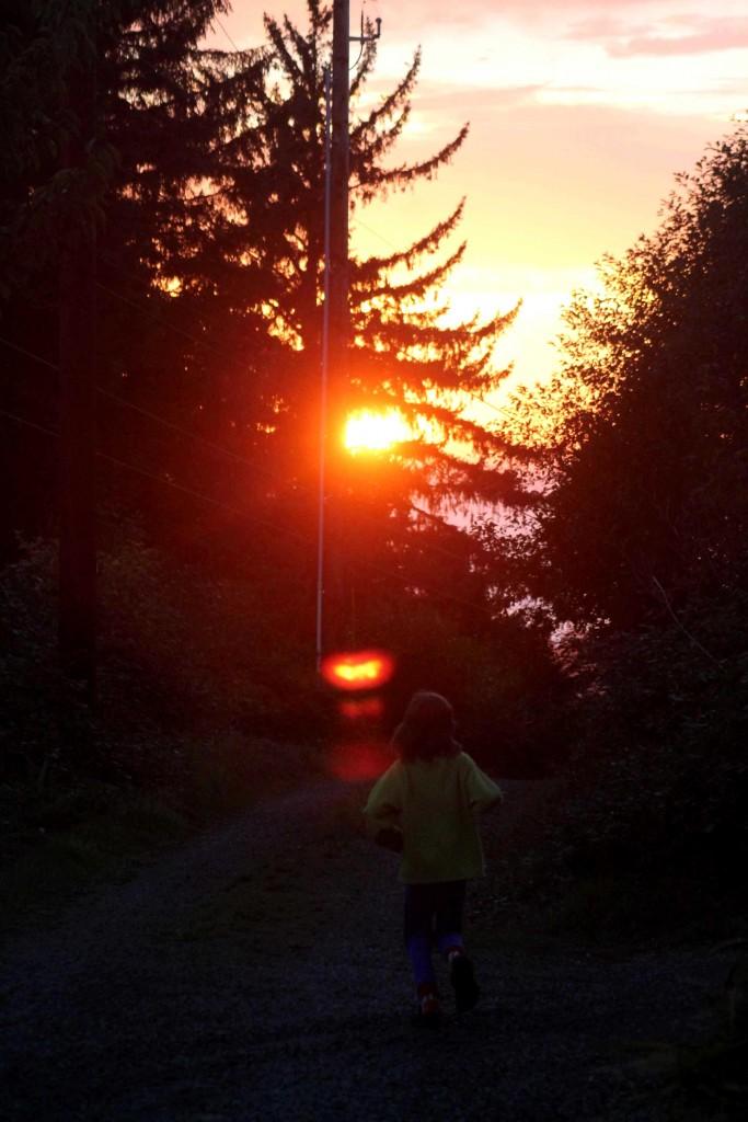 sunset IMG_1562