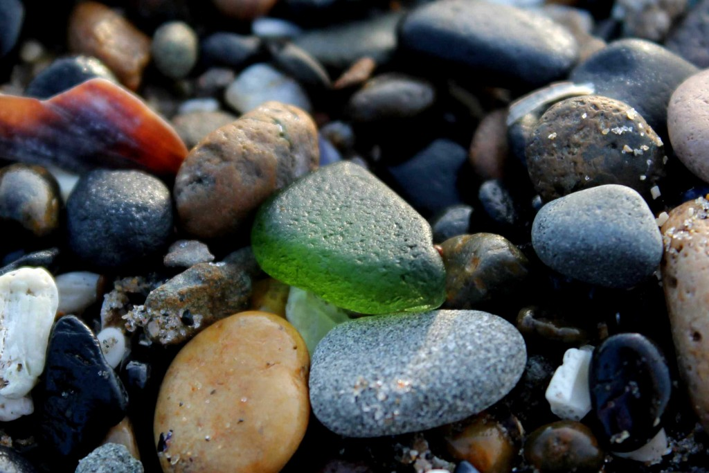 green IMG_4549