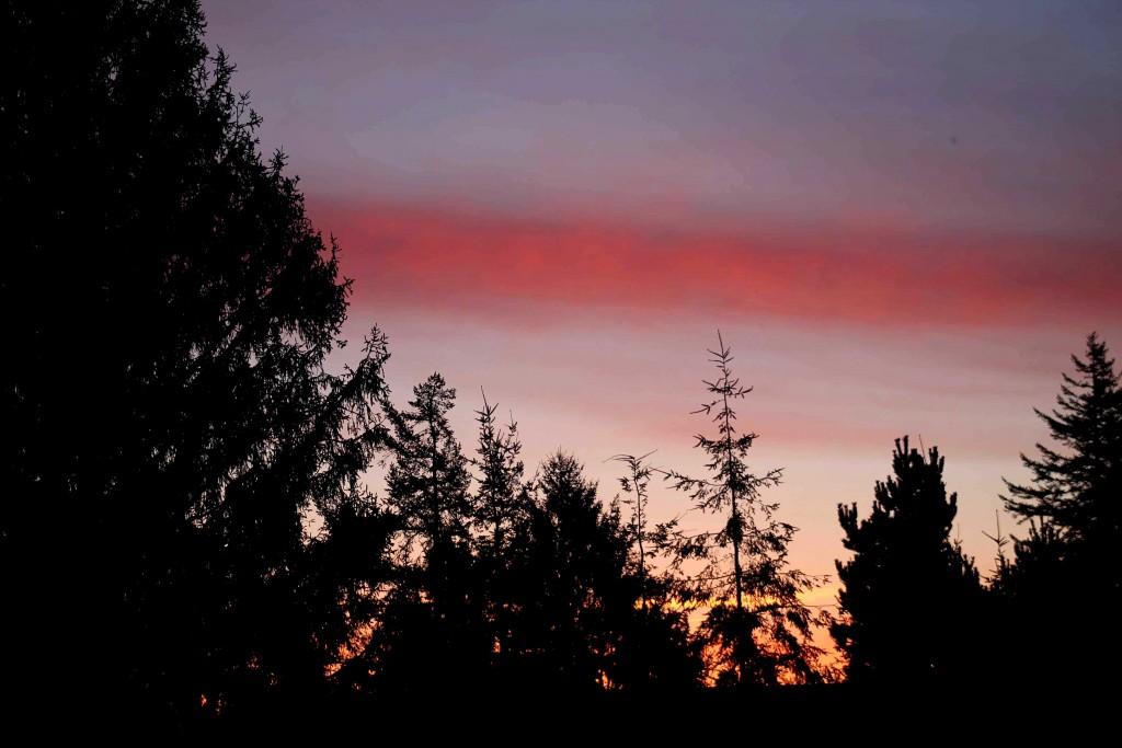 sunrise IMG_4617