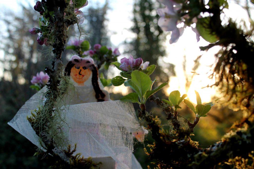 flat bride sunrise blossoms IMG_5476