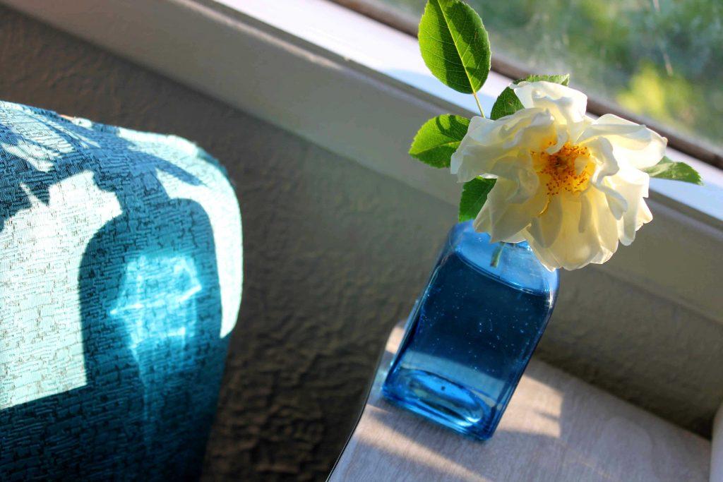 flower love IMG_6304