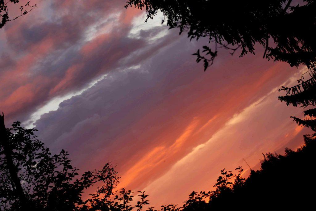 sunrise IMG_6071