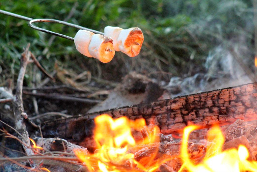 bonfire-img_0360