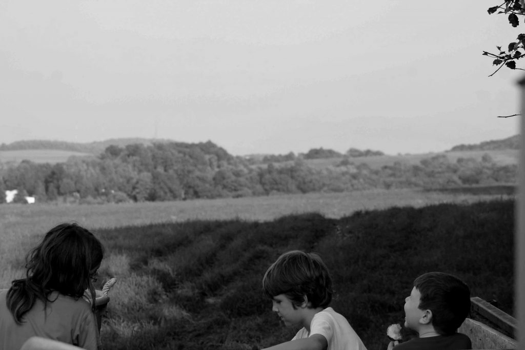 bw-trees-boys-img_0076