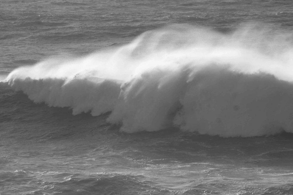 bw-wave-img_2023